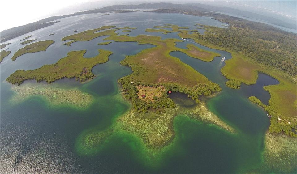 Jinja Island Reef From Above