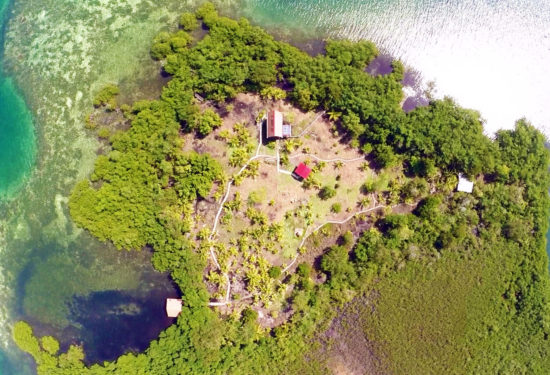 Jinja-Island-from-Above-4-scaled